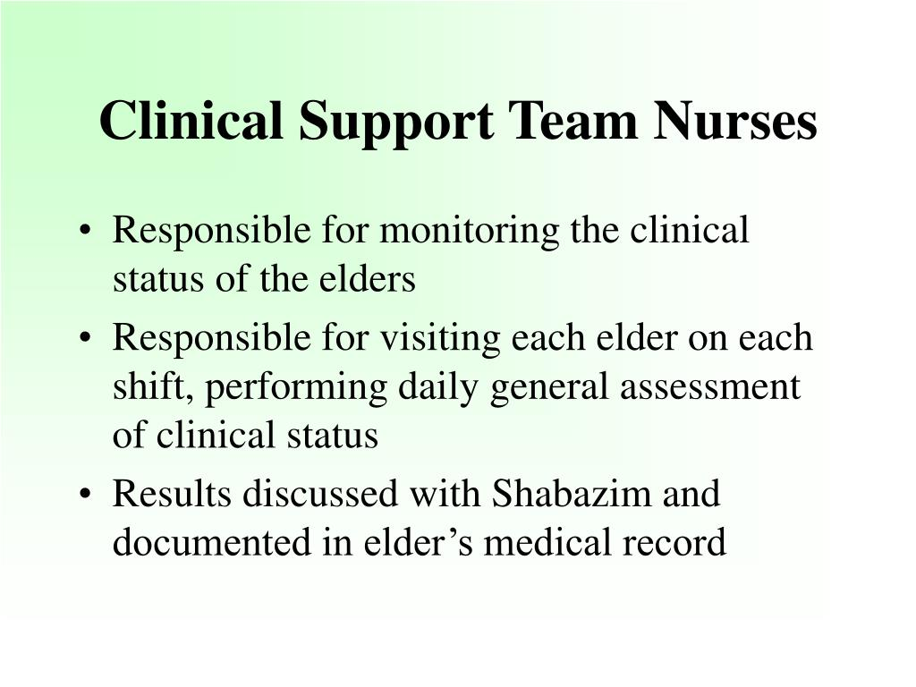 Clinical Support Team Nurses