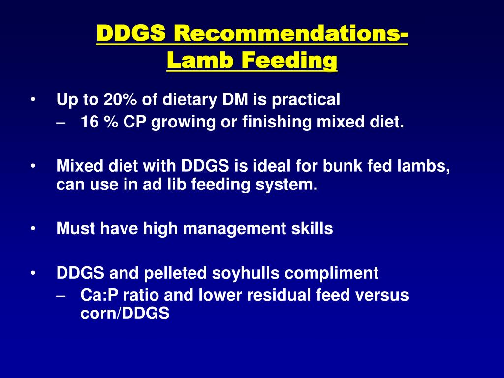 DDGS Recommendations-