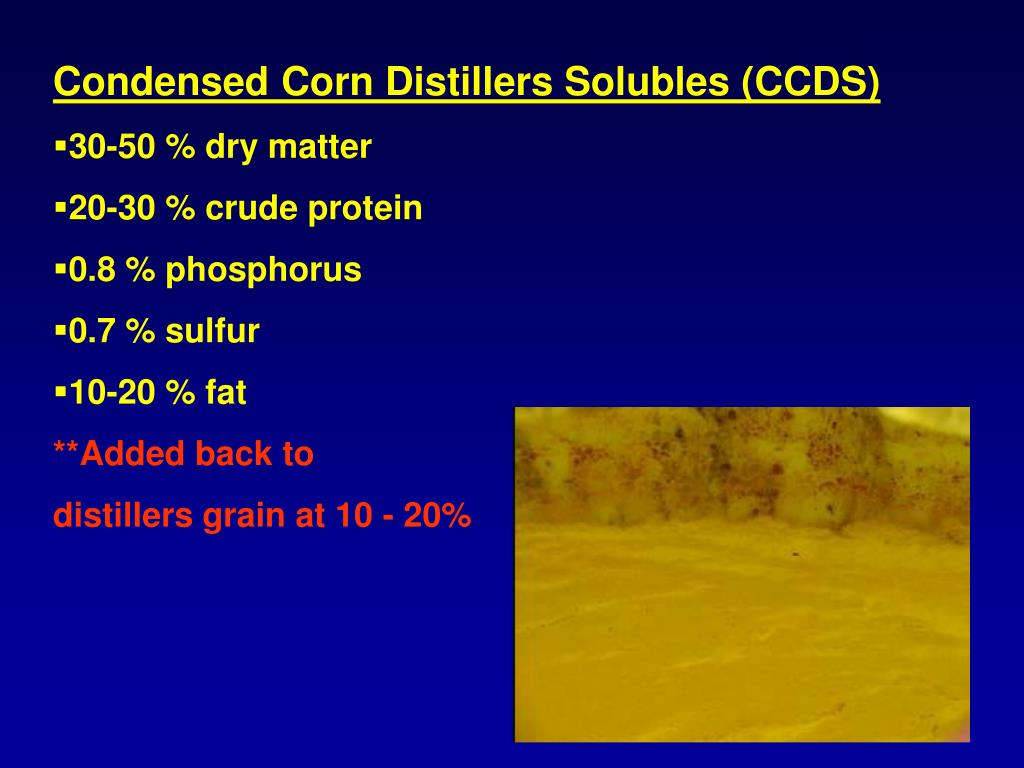 Condensed Corn Distillers Solubles (CCDS)
