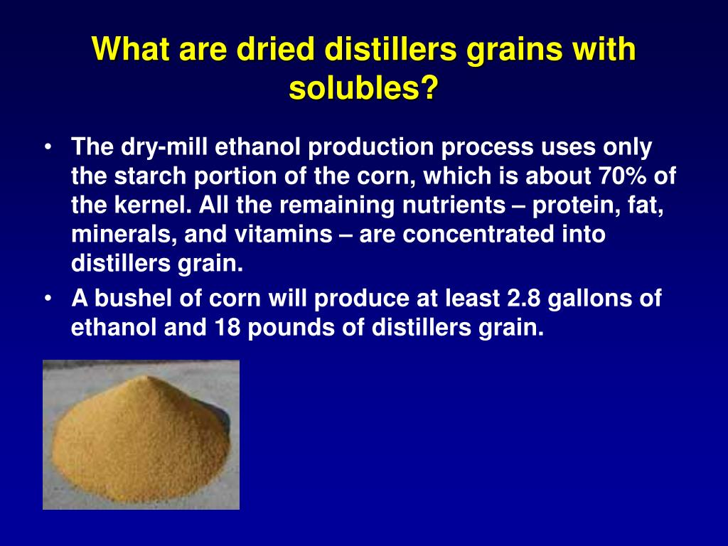 What are dried distillers grains with solubles?