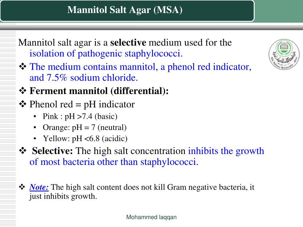 Mannitol Salt Agar (MSA)