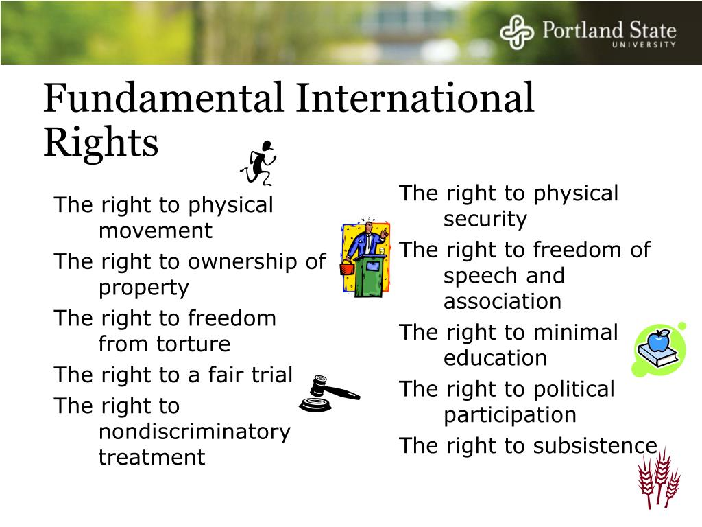 The right to physical movement