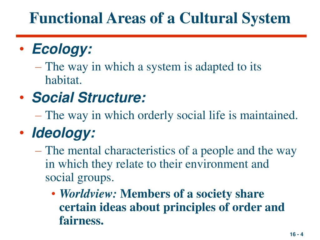 Functional Areas of a Cultural System