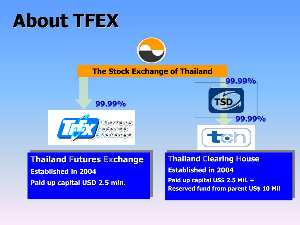 About TFEX