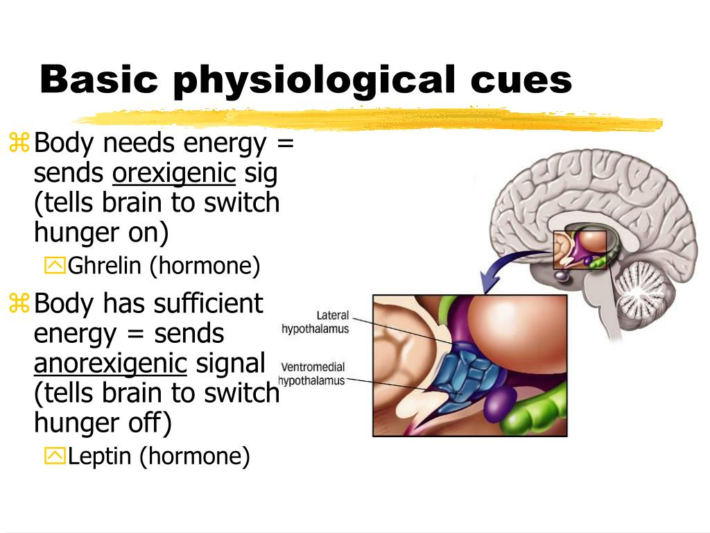 Basic physiological cues