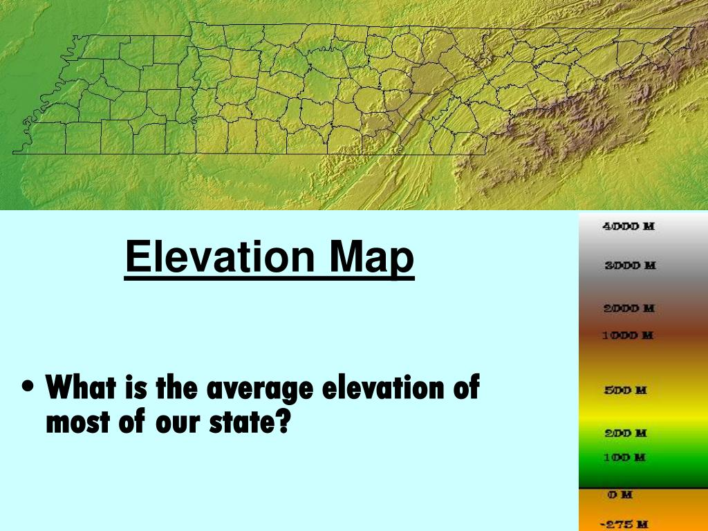 What is the average elevation of most of our state?