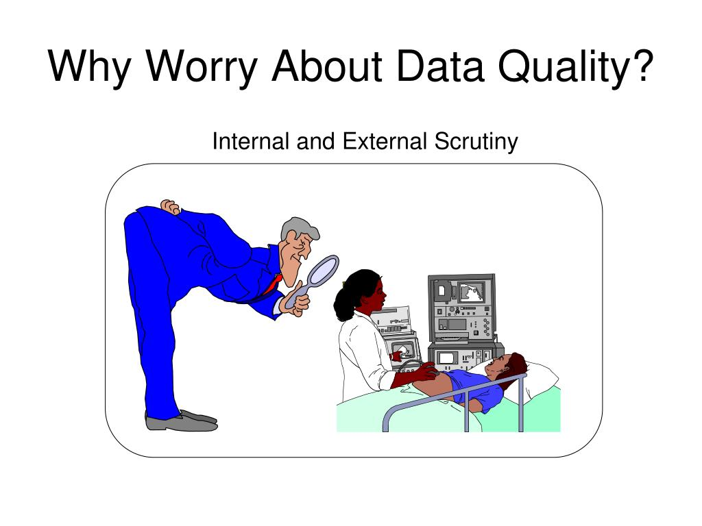 Why Worry About Data Quality?