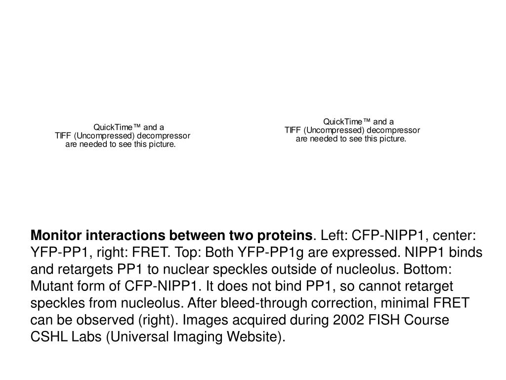 Monitor interactions between two proteins