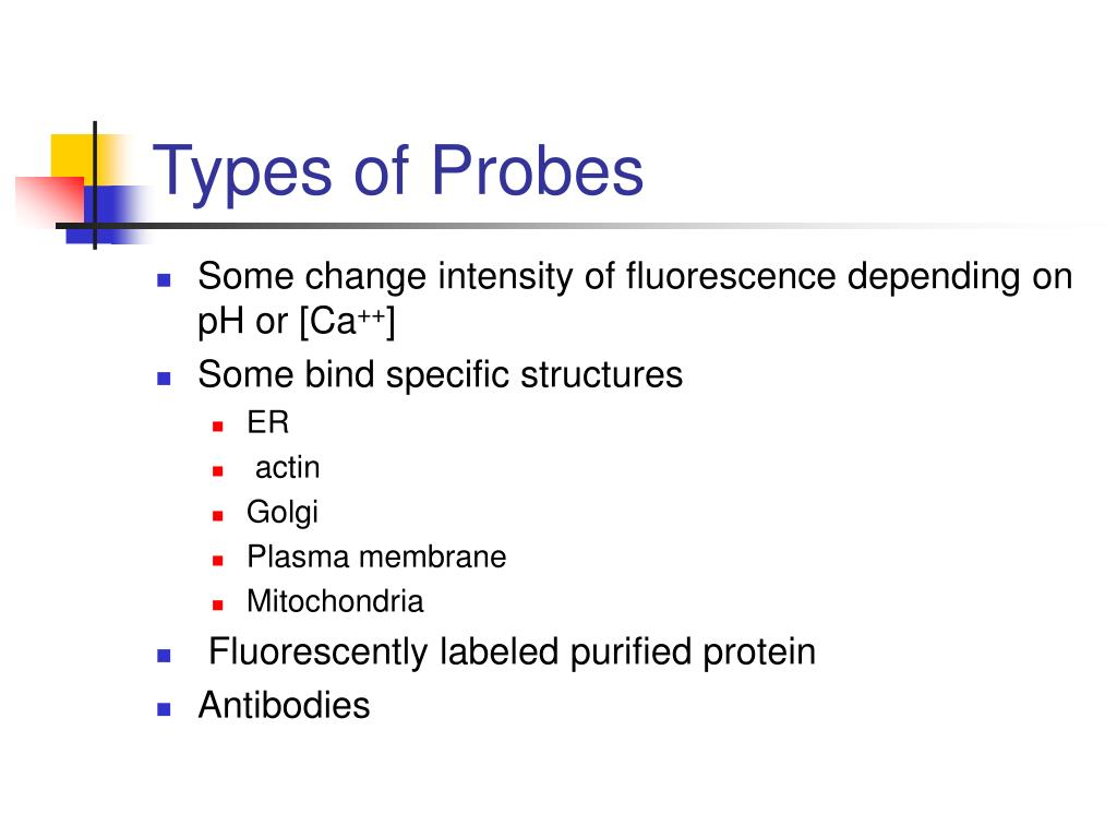 Types of Probes