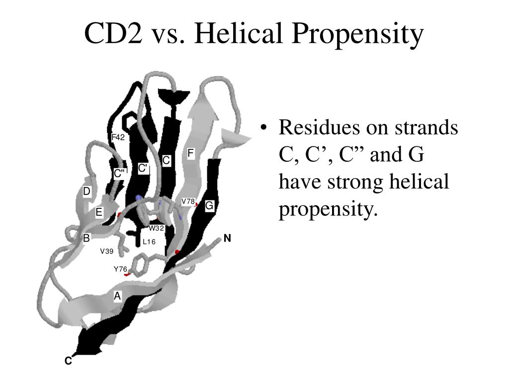 CD2 vs. Helical Propensity
