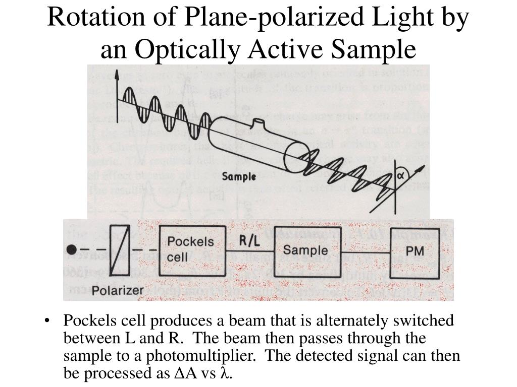 Rotation of Plane-polarized Light by an Optically Active Sample