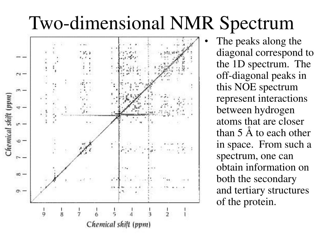 Two-dimensional NMR Spectrum
