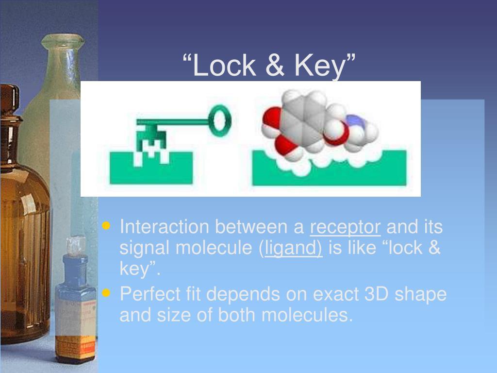 """""""Lock & Key"""""""