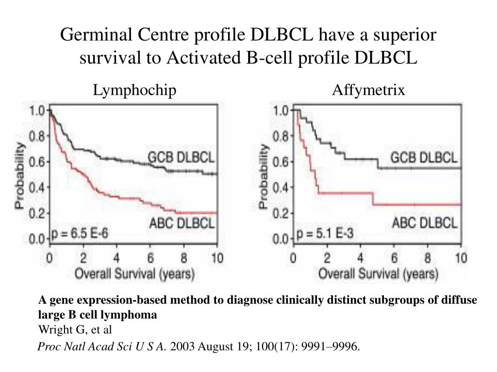 Germinal Centre profile DLBCL have a superior survival to Activated B-cell profile DLBCL
