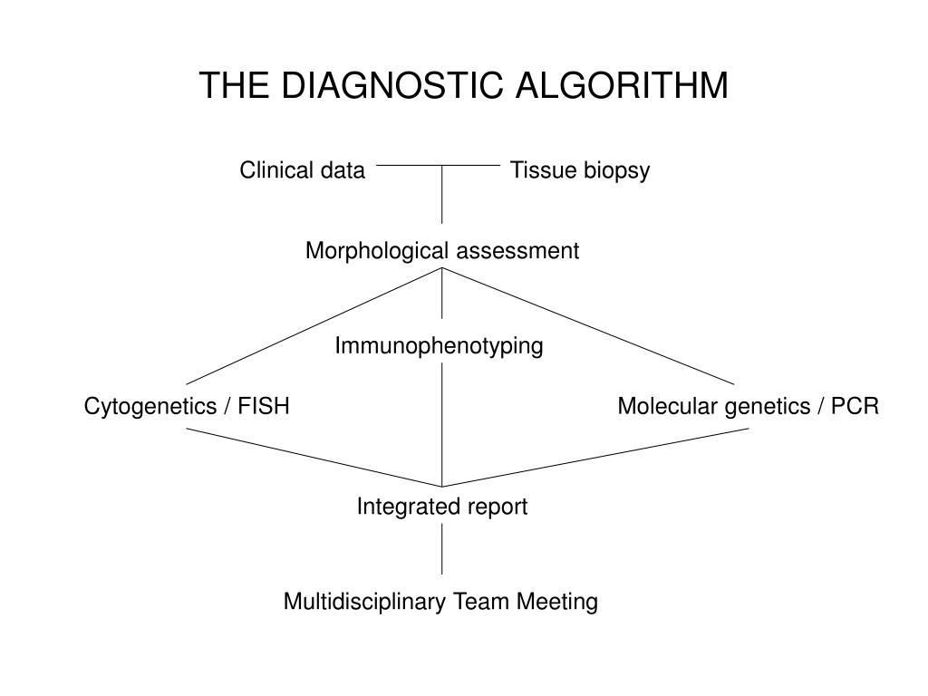 THE DIAGNOSTIC ALGORITHM
