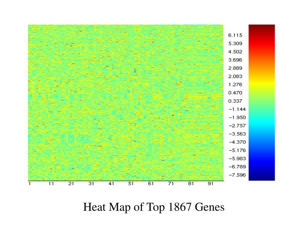 Insert heat map of 1867 genes