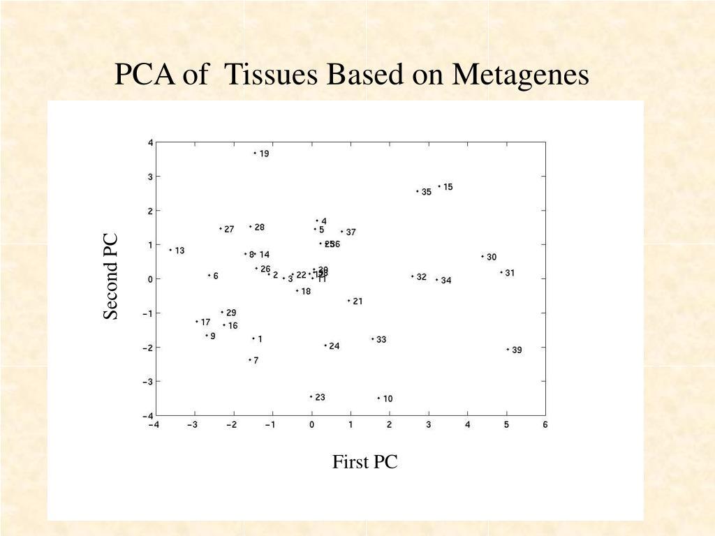 PCA of  Tissues Based on Metagenes