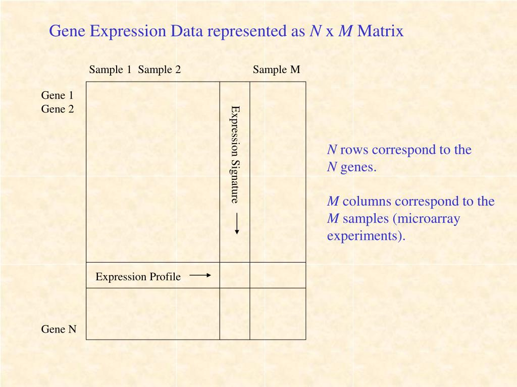 Gene Expression Data represented as