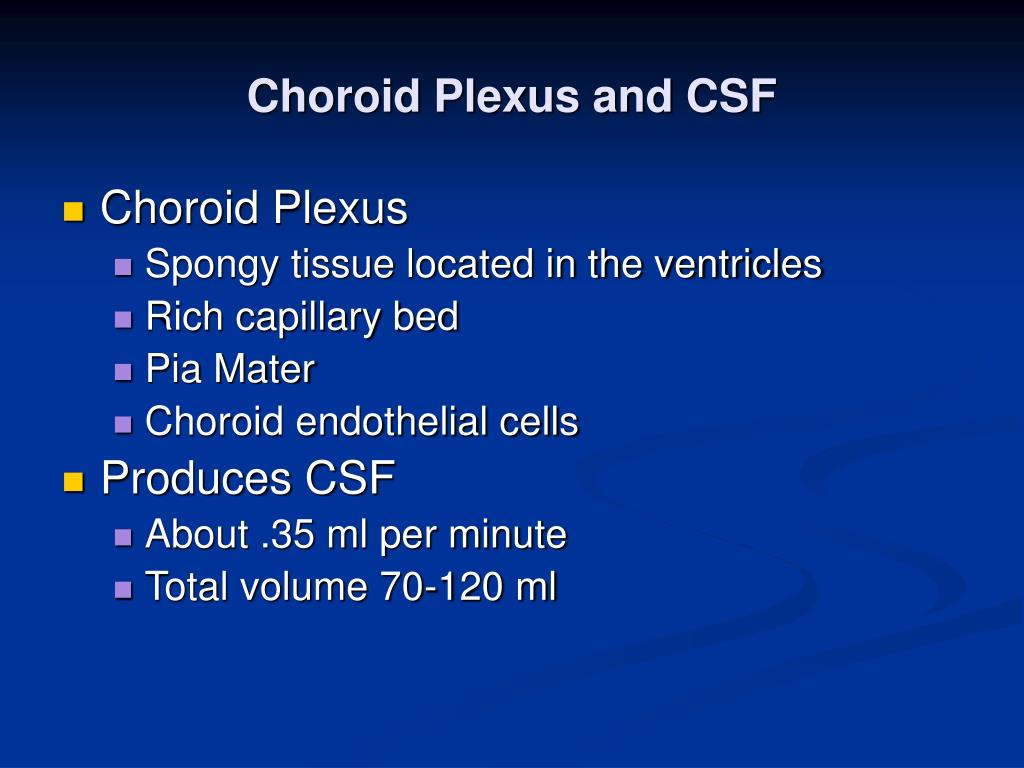 Choroid Plexus and CSF
