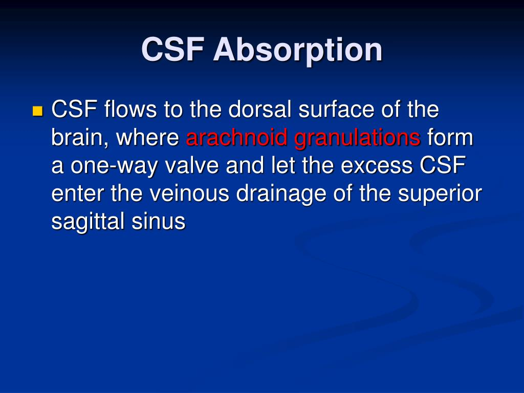 CSF Absorption