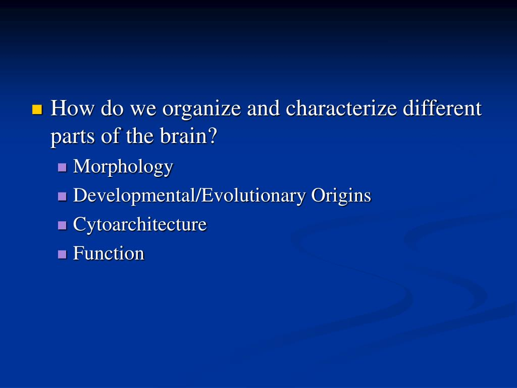 How do we organize and characterize different parts of the brain?