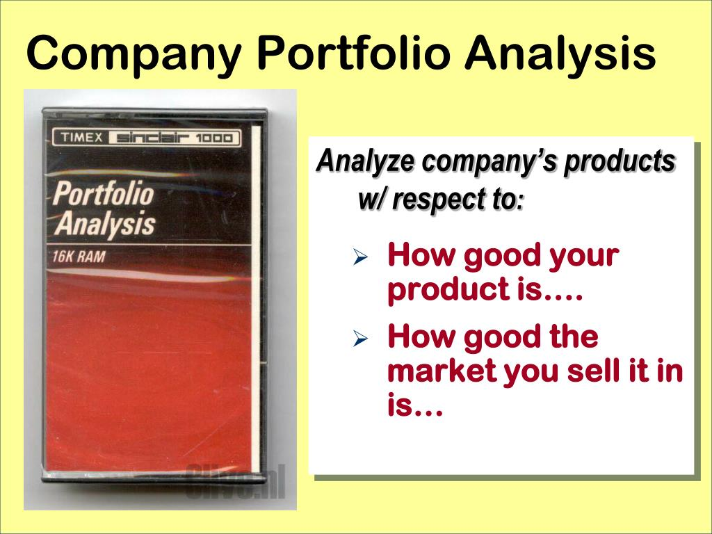 Company Portfolio Analysis