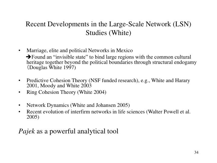 Recent Developments in the Large-Scale Network (LSN) Studies (White)