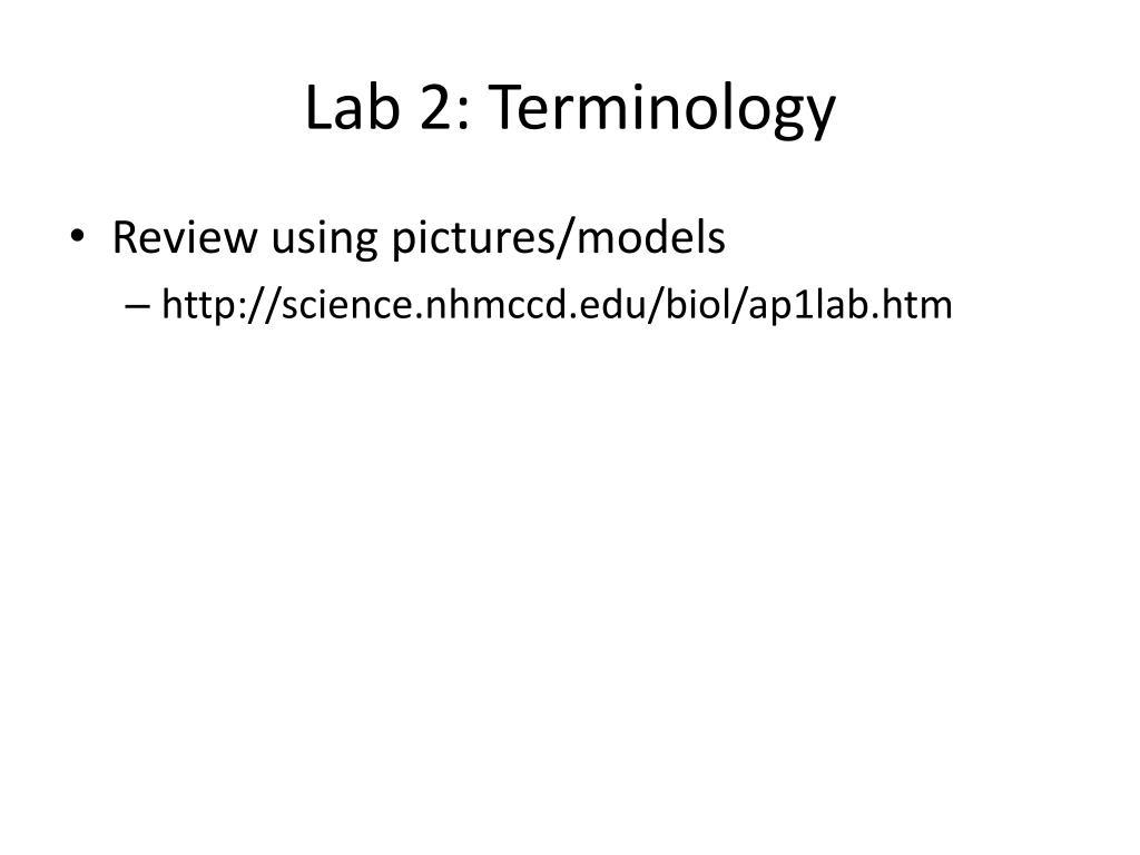 Lab 2: Terminology