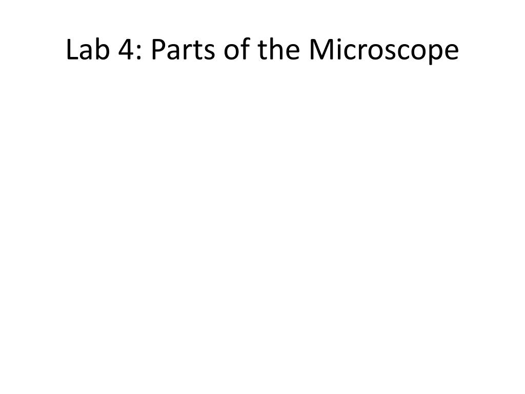 Lab 4: Parts of the Microscope