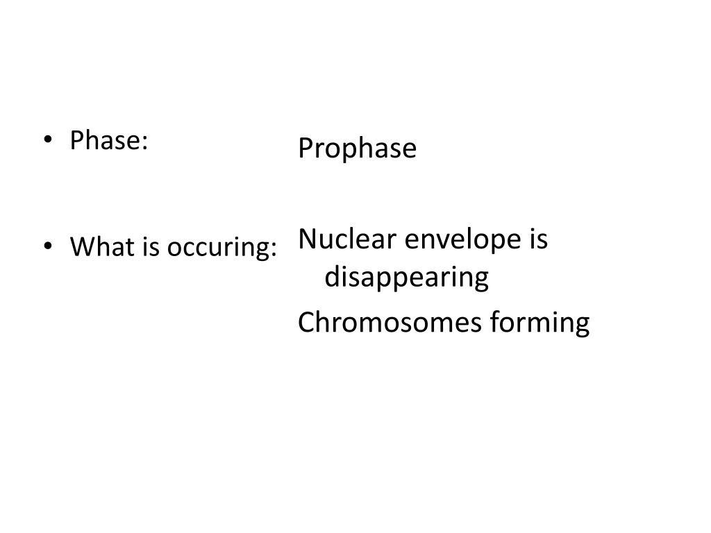 Phase: