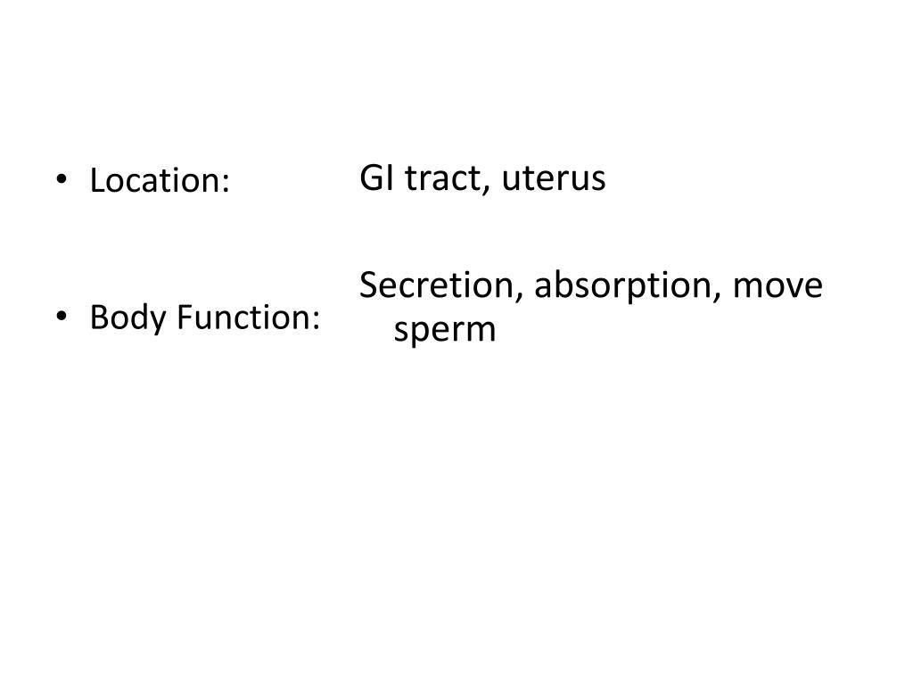 GI tract, uterus