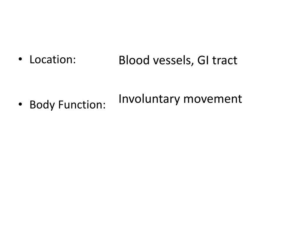 Blood vessels, GI tract