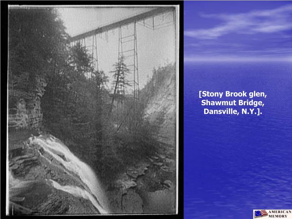 [Stony Brook glen, Shawmut Bridge, Dansville, N.Y.].