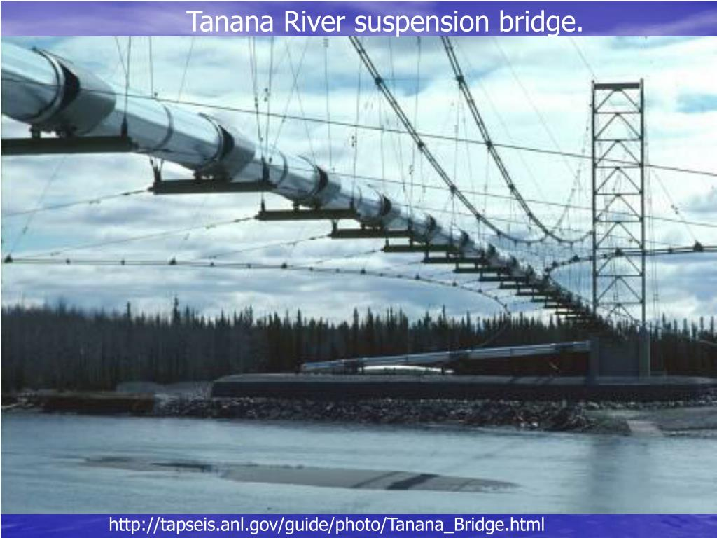 Tanana River suspension bridge.