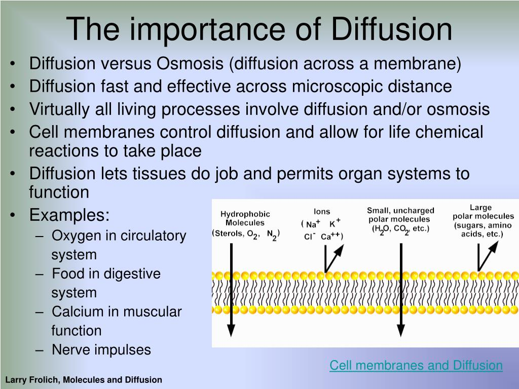 The importance of Diffusion