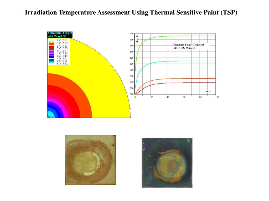 Irradiation Temperature Assessment Using Thermal Sensitive Paint (TSP)