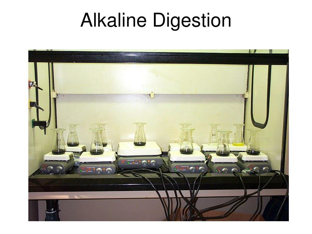 Alkaline Digestion