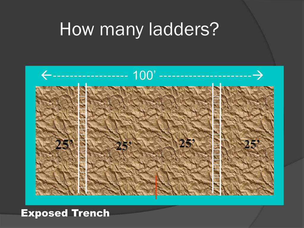 How many ladders?