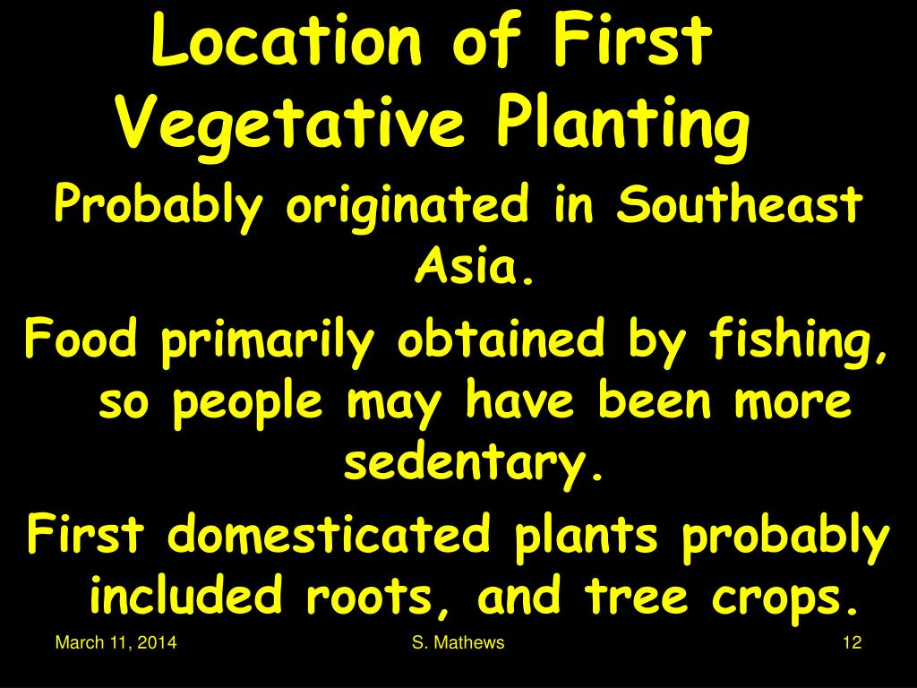 Location of First Vegetative Planting