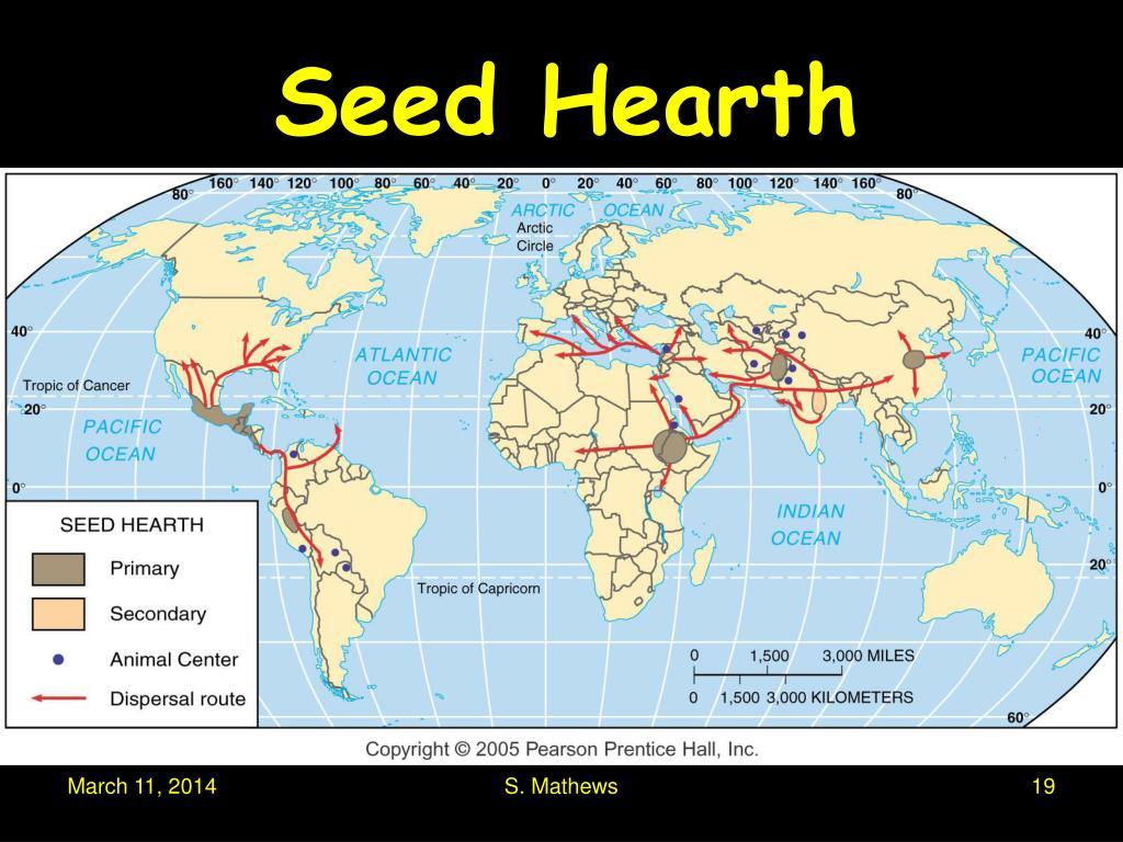 Seed Hearth