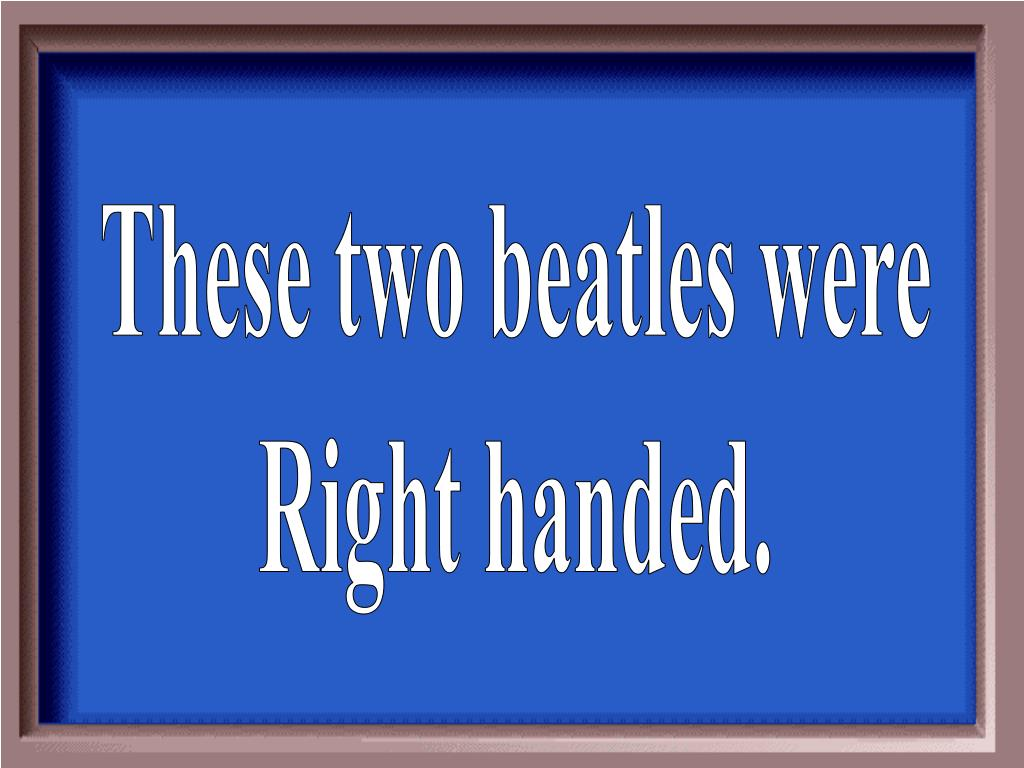 These two beatles were