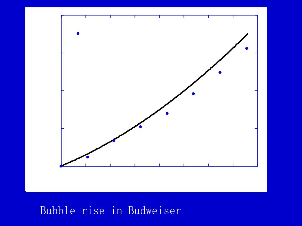 Bubble rise in Budweiser