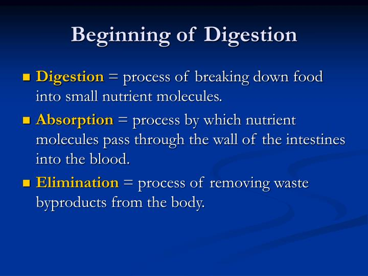 Beginning of Digestion