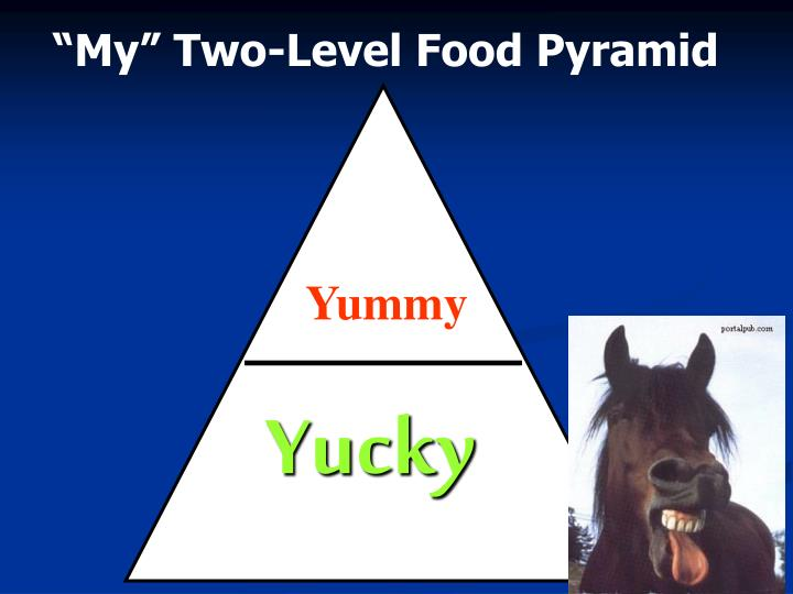 """""""My"""" Two-Level Food Pyramid"""