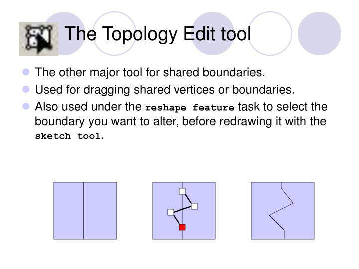 The Topology Edit tool