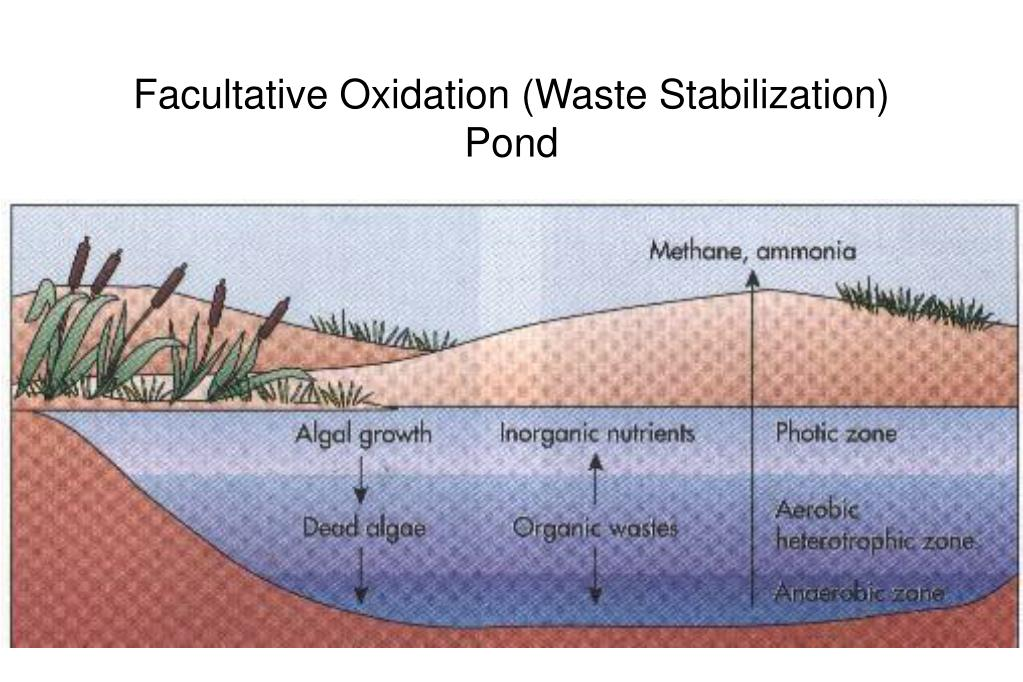 Facultative Oxidation (Waste Stabilization) Pond