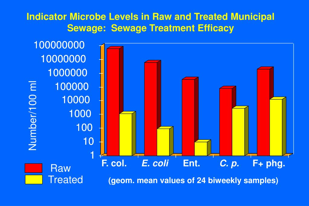 Indicator Microbe Levels in Raw and Treated Municipal Sewage:  Sewage Treatment Efficacy