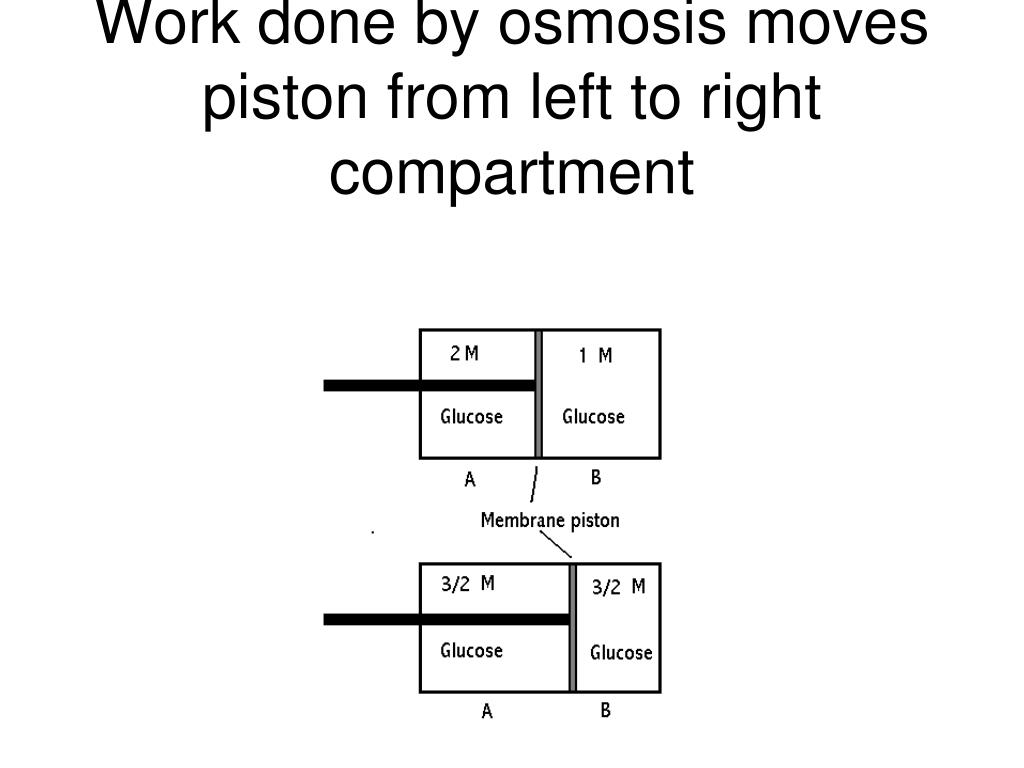 Work done by osmosis moves piston from left to right compartment