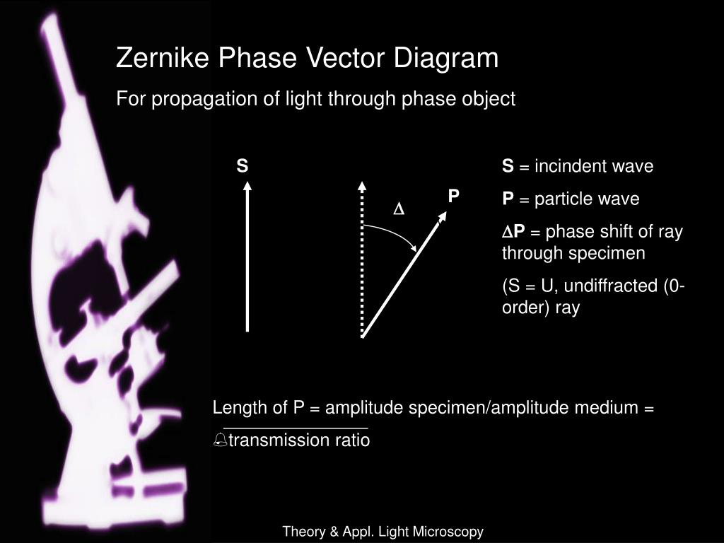 Zernike Phase Vector Diagram