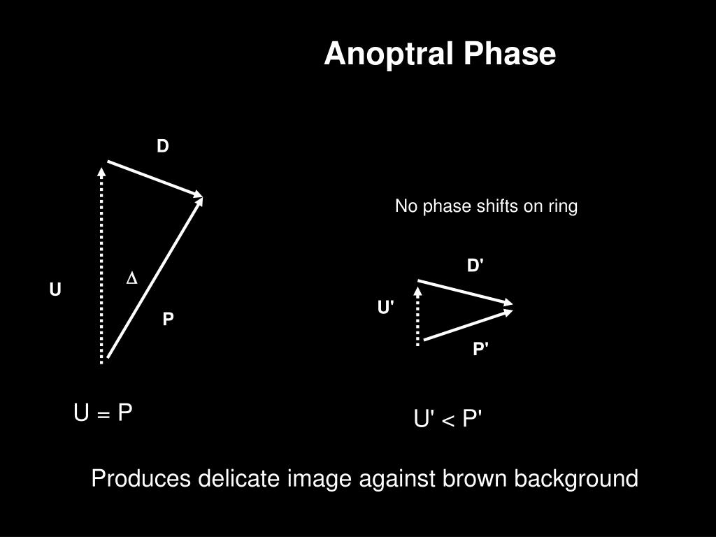 Anoptral Phase